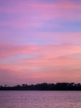 Woke early enough to capture the sunrise mauves, pinks and blues